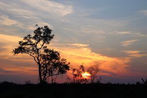 Ayoré Sunset