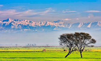 Beautiful-village-pakistan