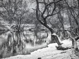 River Stour Winter Dress,Black & White B/W, Bournemouth, Dorset, England.