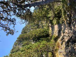 Naturel travel France
