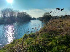 The River Stour, Wimborne