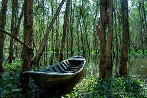 Tra Su Boat