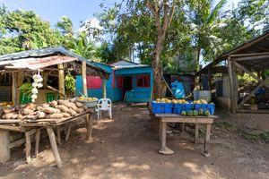 Market between some Houses