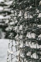 Snow-2