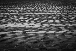 Sand Ripples on a Beach in Black and White