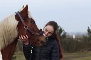 Girl kissing the horse forehead