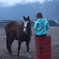 Girl taking a photo with her horse