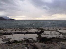 Landscape on the shoreline