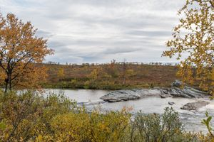 Autumn colors by a river in Alta Finnmark