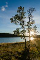 Sunset by a small lake