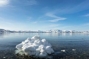 Still not spring in the arctic