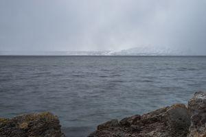 Snowing in Alta