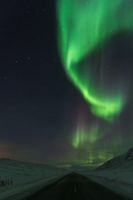 Northern lights Finnmark Norway above Sennalandet road