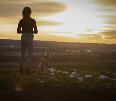Owner with his Labrador Retriever with sunset background