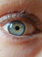 Occhio azzurro - macro