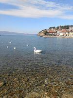 Ohrid / North Macedonia