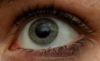 Eye reflections