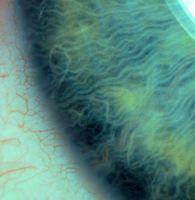 Eye super close up