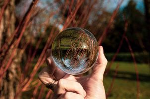 Trees and glass ball