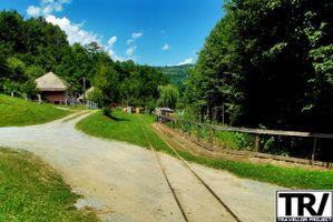 The narrow gauge railway