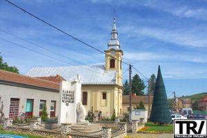 The Roman-Catholic Church