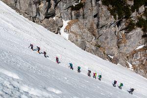 Row of climbers