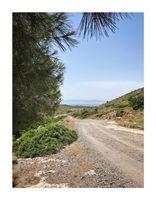 Travel Stories: Aegina