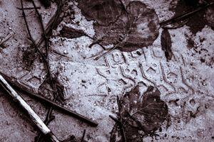 Dirty footprint