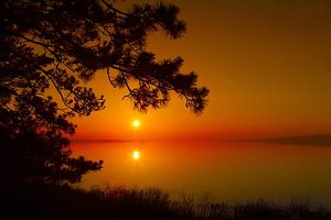 Sunset-dawn-wood-silhouette-thumb