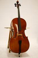 Cello in studio