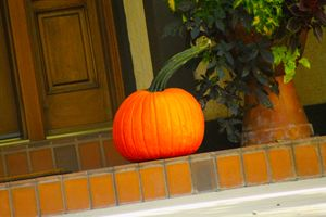One Pumpkin October 2,2020  Ogden utah