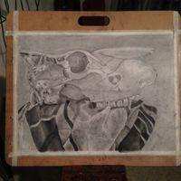 Still Life- Charcoal- 14x17
