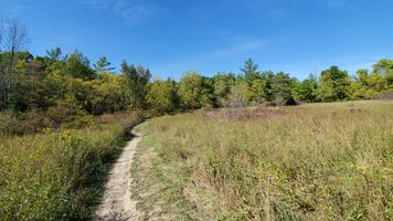The trail of a Conservation area