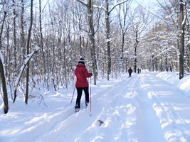 Wintersport im Stadtwald