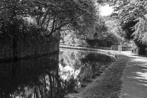 Calder & Hebble Canal at Copley