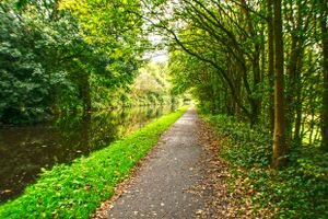 Woodland Canal Path at Copley