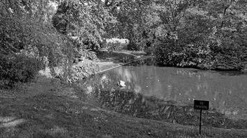 People's Park Pond, Halifax