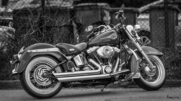 Harley Davidson-Davidson Heritage Softail