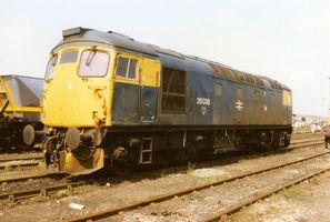 26036 - Graham Maxtone