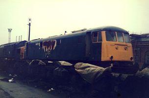 81001 @ Crewe 1983 - Steve Thorpe