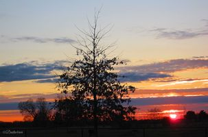 Deck Sunset