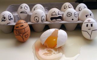 LOOK AT THE EGGS EXPRESSION