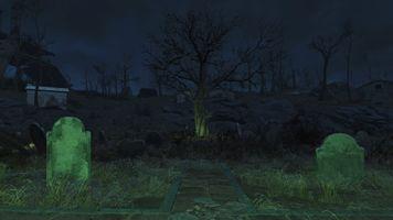 Spooky Tree in Cemetery