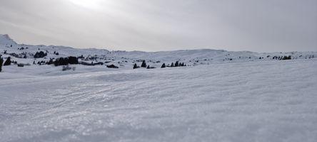 Siwss Alps