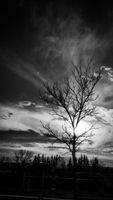 Le ciel dans toute sa splendeur, Black and white photography, Calgary AB