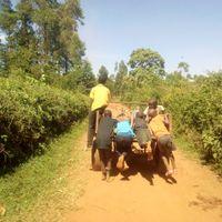 African Travel Cart