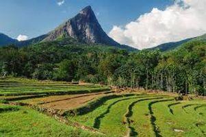 Sri Lanka  beautiful place