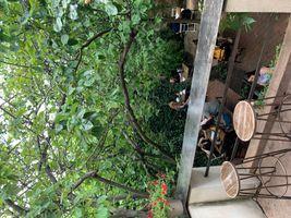 Green house coffee shop