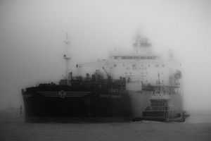 Misty Arrival