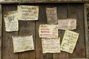 Hobbit Notice Board